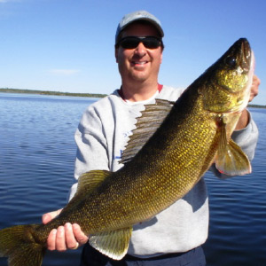 Trophy Walleye Catch