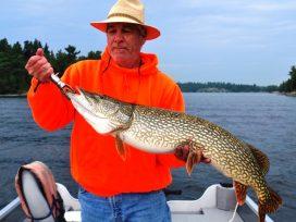 Jim Westfall 45in Pike