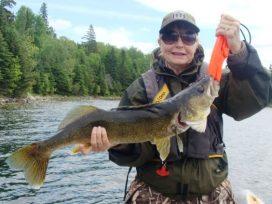 Judy Kammerer 31in Walleye